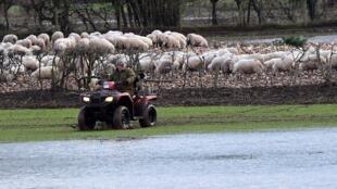Les tempêtes Dennis et Ciara ont provoqué des inondations en Irlande, mais aussi au Pays-de-Galles, comme ici près de Crickhowell où un agriculteur vérifie son champ, le 17 février 2020. (image d'illustration)