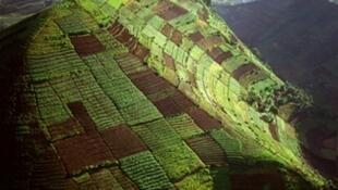 Vue aérienne des terres de la région du Virunga en RD Congo.