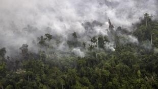 ផ្សែងភ្លើងព្រៃ នៅខែត្រ Riau ឥណ្ឌូណេស៊ី កាលពីខែកញ្ញាឆ្នាំ២០១៥។