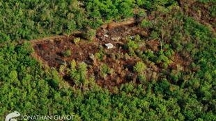 """""""La gran selva maya de Yucatán vista desde el cielo""""."""