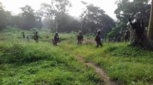 Les troupes de la Monusco en appui aux FARDC, lors d'une opération dans le territoire de Beni, en octobre 2017.