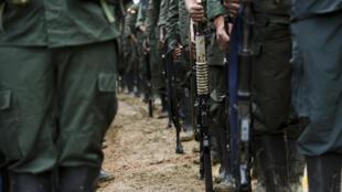 Rebeldes das Farc em acampamento na área rural de Policarpa, no sudoeste da Colômbia.