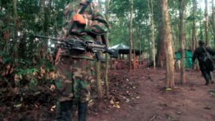 Một trại của quân nổi dậy Farc nằm trong khu vực bị quân chính phủ tấn công hôm 28/2012./