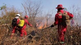 Bombeiros trabalham em área de floresta destruída pelo fogo em Santa Rosa de Tucavaca, Bolívia, 28 de agosto de 2019.