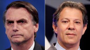 Hai ứng viên, Jair Bolsonaro (T), đại diện phe cực hữu và Fernando Haddad (P), thuộc cánh tả vào vòng hai tranh cử tổng thống Brazil.
