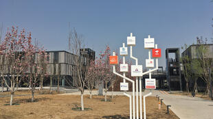 L'arbre des grandes entreprises inscrites dans la zone d'un quartier témoin de la ville chinoise du futur.