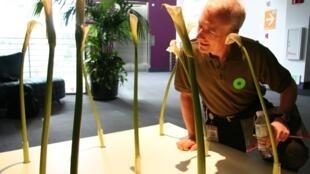 复制粘贴的发明人Larry Tesler 2007年