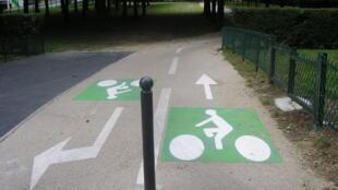Cycle lane in Paris