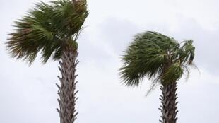 Degradado a tormenta tropical, Barry amenaza con fuertes inundaciones.