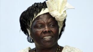 Africa's first Nobel Peace Prize winnner Wangari Maathai in 2010