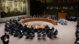 Hội Đồng Bảo An Liên Hiệp Quốc họp ngày 24/02/2018, New York.