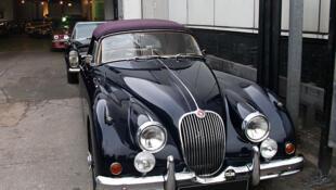 A shiny classic Jaguar