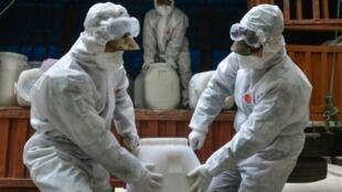 身穿防化服的中国武警正在湖北搬运消毒用品。