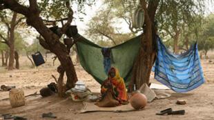 Les réfugiés soudanais sont massés à l'est du Tchad, à la frontière avec le Darfour.