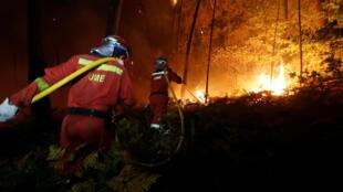 В результате лесных пожаров на севере Испании и Португалии погибли по меньшей мере 30 человек.