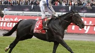 Jockey Gerald Mosse of France riding Americain in the Melbourne Cup