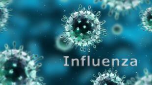 Vírus influenza, responsável pelas epidemias invernais de gripe