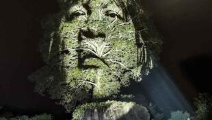 Projeção de rosto de índio na floresta, feita pelo artista francês Philippe Echaroux