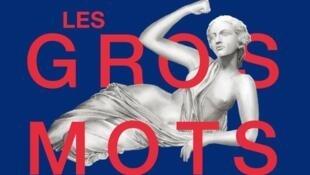 La couverture du livre Clarence Edgard-Rosa,  «Les gros mots, un abécédaire joyeusement moderne du féminisme».
