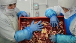 Trabajadores del sector cárnico manipulando la carne