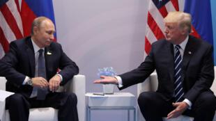 Putin e Trump se reuniram na sexta-feira (7) à margem da cúpula do G20 na cidade alemã de Hamburgo.