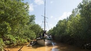 A Madagascar, 60% des touristes étrangers optent pour le circuit du Grand Ouest qui permet d'admirer ces paysages somptueux, comme la rivière Tsiribihina (photo).