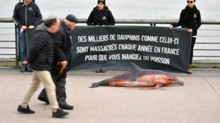 Des membres de Sea Shepherd brandissant une bannière devant un dauphin mort.