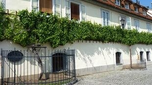 House of the oldest grapevine in the world in Maribor, Slovenia. The grapevine is about 440 years old.
