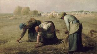Des Glaneuses (Người phụ nữ đi mót lúa, 1857), tác phẩm của Jean-François Millet, trưng bày tại bảo tàng Orsay, Paris.