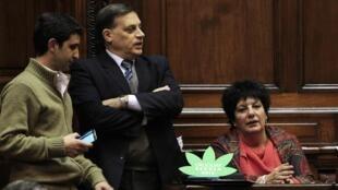 Diputados frenteamplistas durante el debate, este 31 de julio de 2013 en Montevideo.