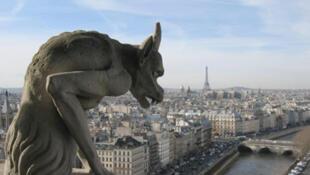 Вид на Париж с Собора парижской богоматери