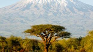 Le Kilimandjaro en Tanzanie.