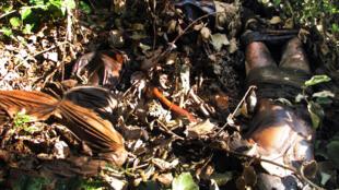 Um dos 15 corpos fotografados dia 1 de Maio na mata na Gorongosa, centro de Moçambique