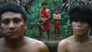 Des indigènes yanomami restent dans la communauté d'Irotatheri, dans l'État d'Amazonas, au sud du Venezuela, à 19 km de la frontière avec le Brésil, le 7 septembre 2012.