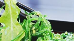 Le wakamé est une algue brune.