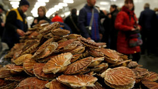 Customers look at scallops at a market stall during an annual celebration of scallops in Port-en-Bessin, France.