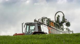 Épandage sur un champ de blé par un agriculteur français.