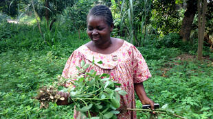 Meraline Donko, president of Sala Naita, a small farming NGO in Bangui, CAR.