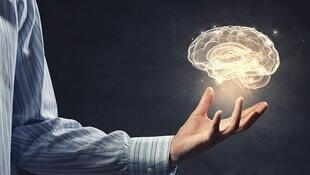 Comer bien, hacer ejercicio, evitar el estrés y ejercitar la mente son algunos de los consejos básicos para mantener un cerebro sano.