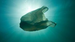El plástico representa el 95% de los residuos que flotan en el Mediterráneo.