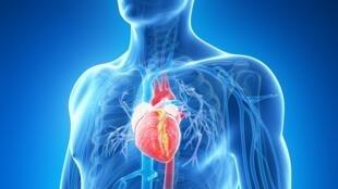 Estudo mostra aumento de problemas cardíacos por causa de analgésicos