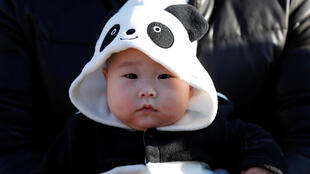 Ảnh minh họa : Đi xem gấu trúc ở sở thú Tokyo !
