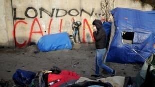 Большинство беженцев из лагеря Кале (так называемые «Джунгли Кале») мечтают попасть в Великобританию.