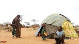 Las personas esperan nuevas llegadas en el campo de refugiados de Dagahaley en Dadaab. Más de 360 mil personas viven en éste, el campo de refugiados más grande del mundo originalmente construido para acoger 90 mil personas.