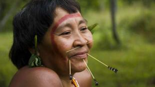 A luta dos povos indígenas por seus direitos foi marcada por vários sucessos em 2013.