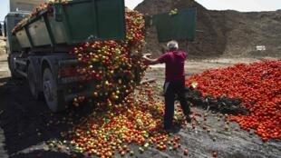 UE aumenta indenização a fazendeiros por surto causado por bactéria