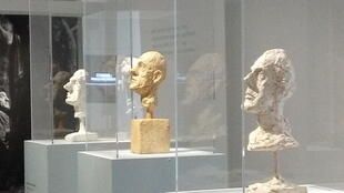 Giacometti's brother Diego and other plaster heads, Maillol Museum, Paris
