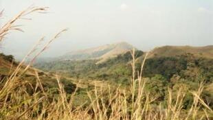 Les environs du Mont Nimba en Guinée.