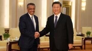 中国国家主席习近平在北京会见世界卫生组织总干事谭德塞    2020年1月28日