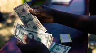 La nouvelle monnaie zimbabwéenne va remplacer les dollars américains utilisés jusqu'à présent.